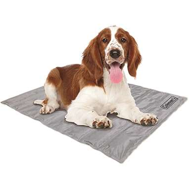 Coleman Pressure Activated Comfort Cooling Pad