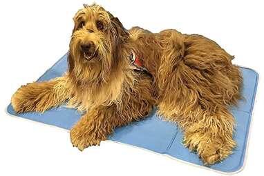 The Green Pet Shop Dog Cooling Mat