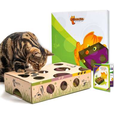 Cat Amazing Interactive Treat Maze