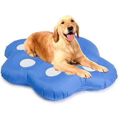 Milliard Dog Float for Pool, Inflatable Stay Dry Float for Dogs