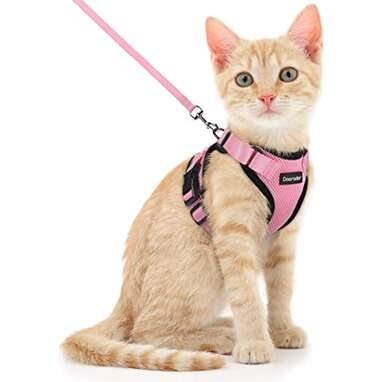 Dooradar Cat Leash and Harness Set