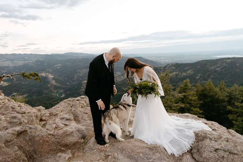 Dogs interrupt couple's wedding ceremony