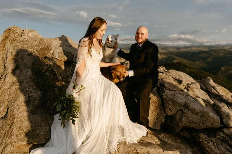 Dogs join in wedding photos