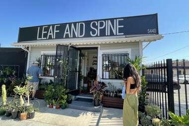Leaf and Spine exterior