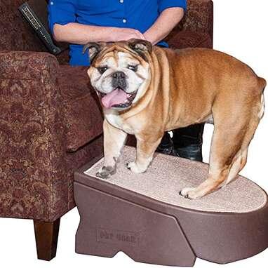 Pet Gear Stramp