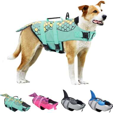 KOESON Dog Life Jacket