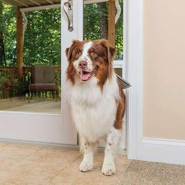 PetSafe Sliding Glass Door Pet Door