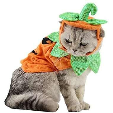 ANIAC Pumpkin Cat Costume