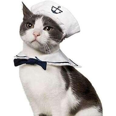 Namsan Sailor Cat Costume