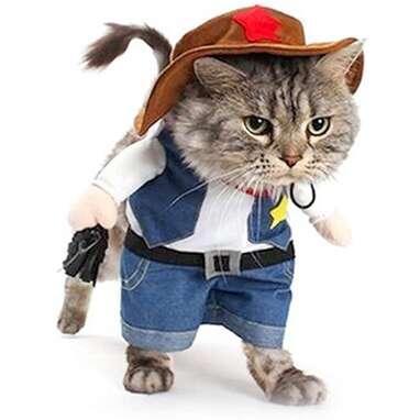 Meihejia Funny Cowboy Cat Costume