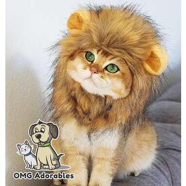 OMG Adorables Lion's Mane Costume