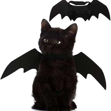 Puoyis Bat Wings Cat Costume