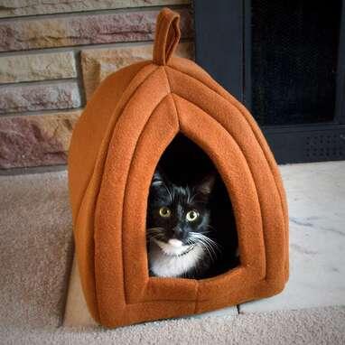PETMAKER Pumpkin Igloo