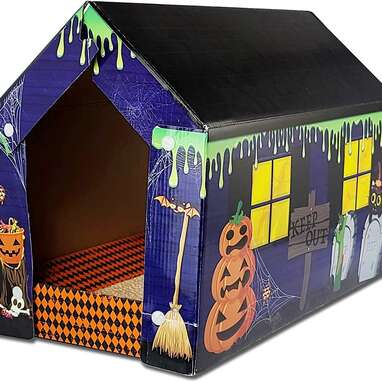 American Cat Club Halloween Cabin