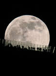 blue moon august 2021