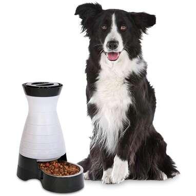 PetSafe Healthy Pet Gravity Food Station