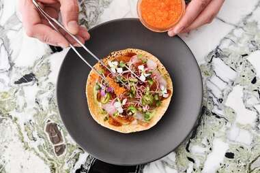 Ceviche Project