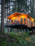 two luxury treehouses in a forest off a backyard