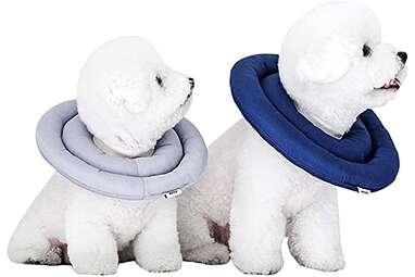 ARRR Comfy UFO Recovery Collar
