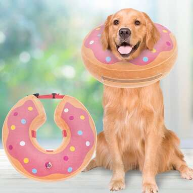 BINGPET Inflatable Dog Recovery Collar