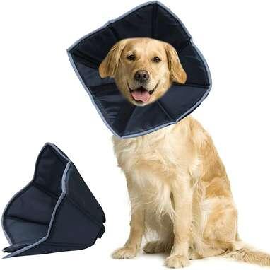 Dunhuang Dog Collar