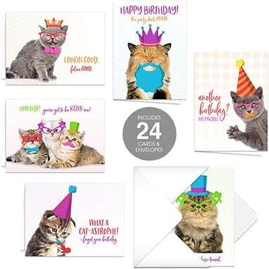 Funny Cat Pun Birthday Card Pack