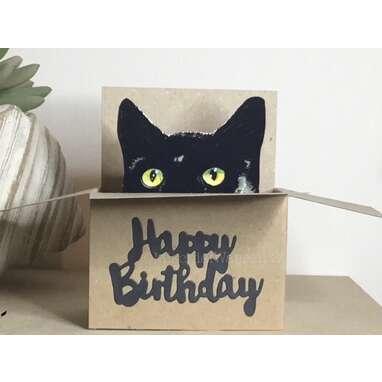 Black Cat Happy Birthday Box Card