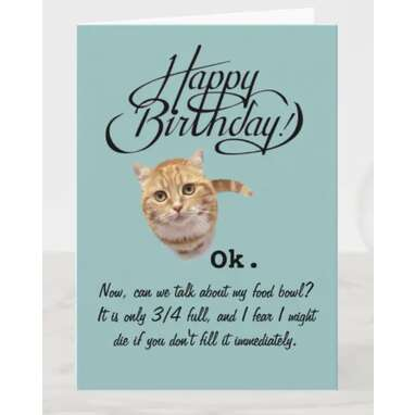 Birthdays From a Cat's Perspective (Birthday Card) Card