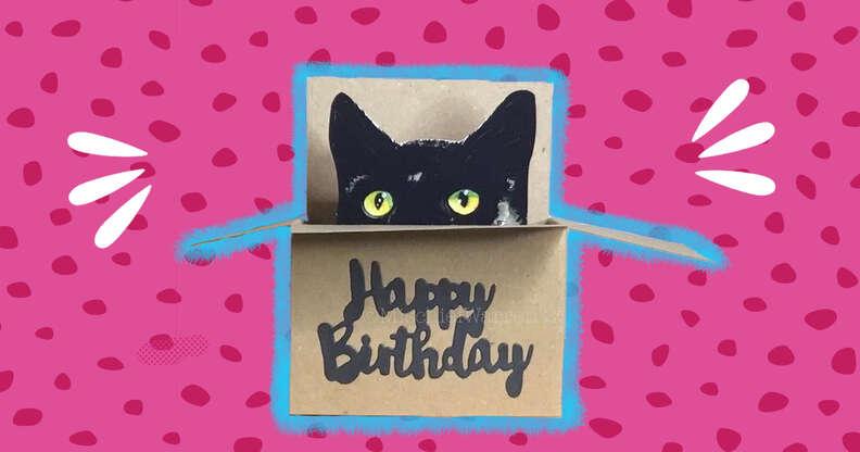 pop up cat in box birthday card
