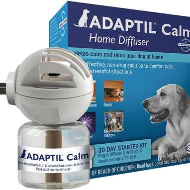 Best Calming Diffuser: Adaptil Calm Home Diffuser