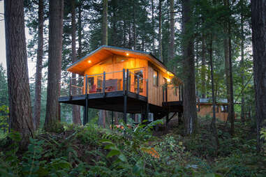a luxury treehouse in the woods in the evening