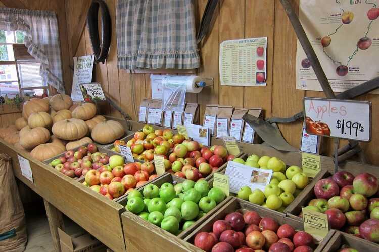 Giamarese Farm