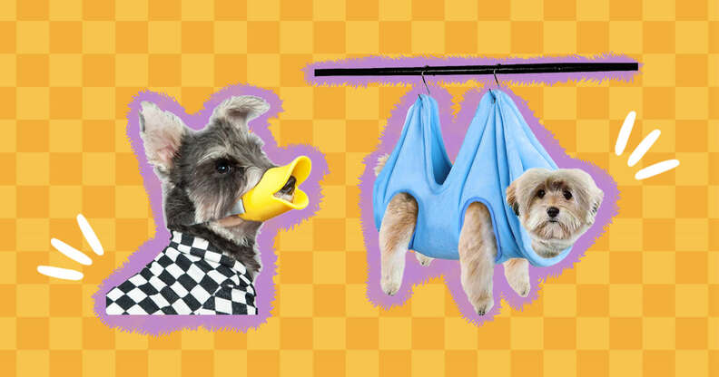 Funny dog grooming tools