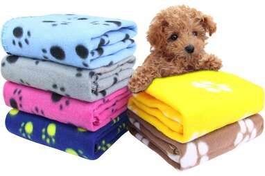 AK KYC 6-Pack Puppy Blankets