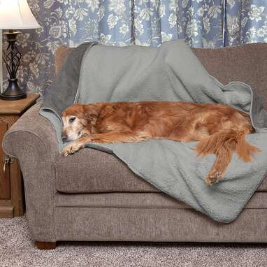 Furhaven ThermaNAP Self-Warming Quilted Blanket