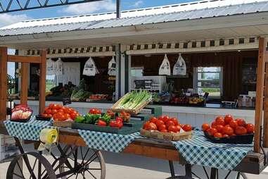 Goebbert's Farm - Pingree Grove