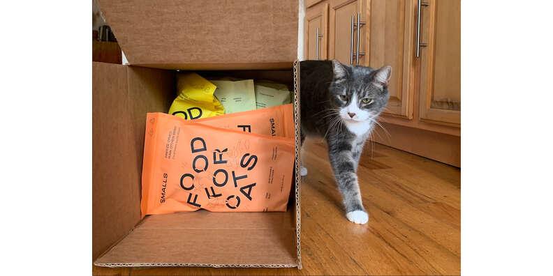 smalls cat food
