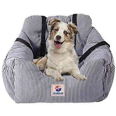 BLOBLO Dog Car Seat