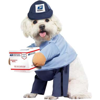 California Costumes Mail Carrier Costume