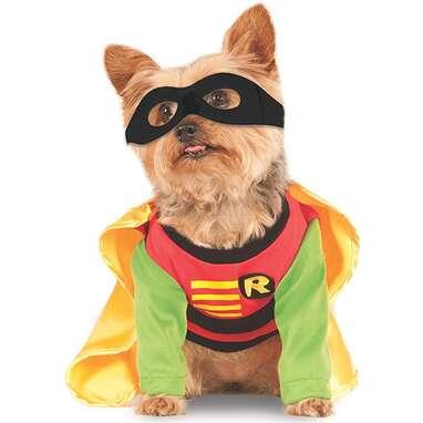 """DC Comics """"Teen Titans"""" Robin Costume"""