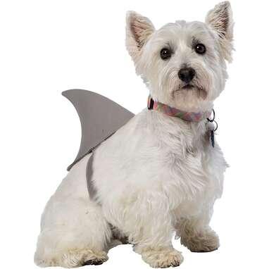 Rasta Imposta Shark Fin Costume