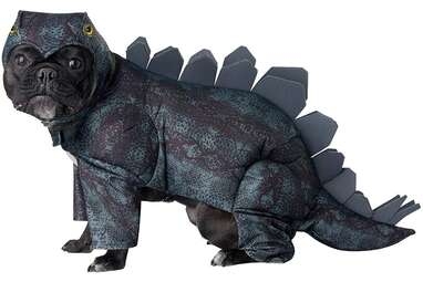 California Costumes Stegosaurus Costume