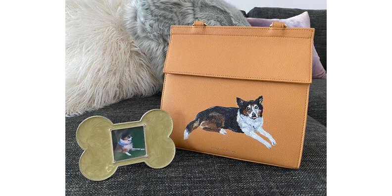 modern picnic pet lunch bag