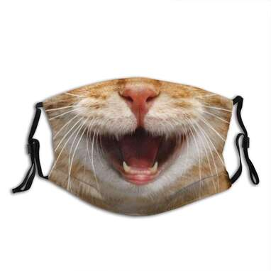 Smile Cat Cloth Face Mask With Filter Pocket Washable Reusable