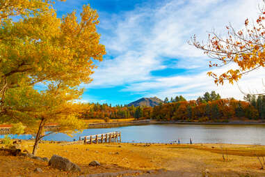 trees and a mountain towering above a lake in fall