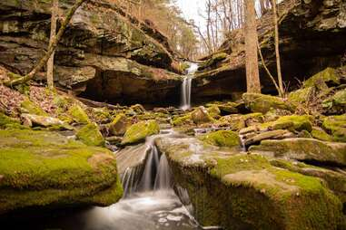 U.S. Forest Service - Shawnee National Forest