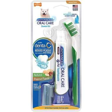 Nylabone Advanced Oral Care Dental Kit with Brush