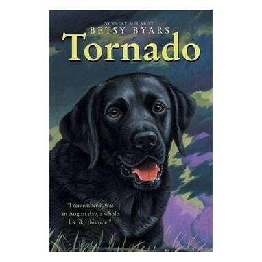 """""""Tornado"""""""