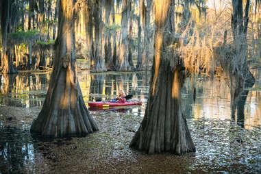 kayaking in a cypress swamp