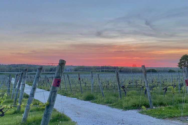Westport Rivers Vineyard & Winery